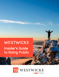 Insider's Guide to Going Public 2020 Westwicke