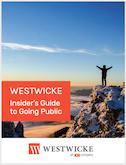Insider's Guide to Going Public