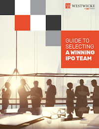 Guide to Your IPO Team eBook