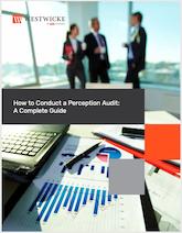 ICR Westwicke eBook: Perception Audit